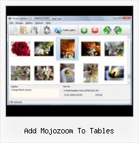 Add Mojozoom To Tables sample popup window