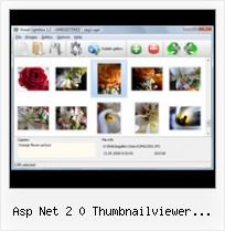 Asp Net 2 0 Thumbnailviewer Example popup window cross compatiblity
