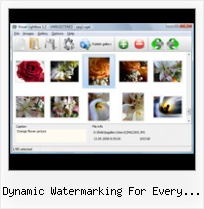 Dynamic Watermarking For Every Viewer popup silver