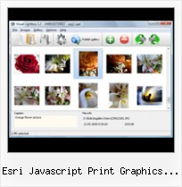 Esri Javascript Print Graphics Nearly There popup window as modal window