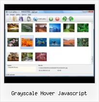 Grayscale Hover Javascript pop up window centre top