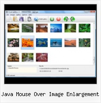 Java Mouse Over Image Enlargement pop up box mouseover
