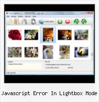 Javascript Error In Lightbox Mode writing directly into popups