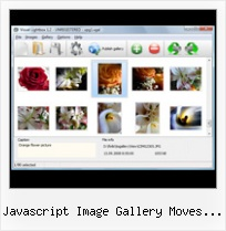Javascript Image Gallery Moves With Mouse popup html script web page