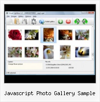 Javascript Photo Gallery Sample popup coming from side java script