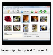 Javascript Popup And Thumbnail Viewer modal popup window in html