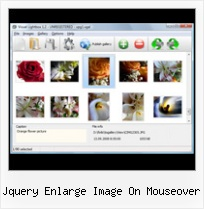 Jquery Enlarge Image On Mouseover pop up window with parameters html
