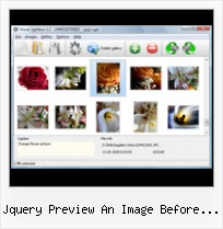 Jquery Preview An Image Before Upload java script click on popup