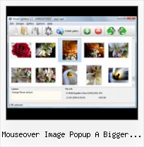 Mouseover Image Popup A Bigger Image examples for ajax modal pop up