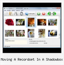 Moving A Recordset In A Shadowbox javacsript centre windows