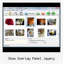 Show Overlay Panel Jquery pop up window floating dhtml