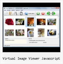 Virtual Image Viewer Javascript pop up box types html