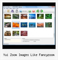 Yui Zoom Images Like Fancyzoom popupcontrol control of ajax